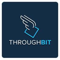 Avatar for ThroughBit