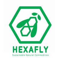 Avatar for Hexafly