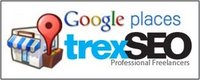 TrexSEO International logo