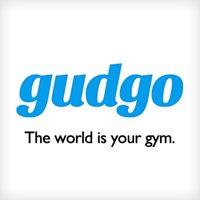 Avatar for Gudgo