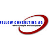 Fellow Consulting AG -  CRM social crm