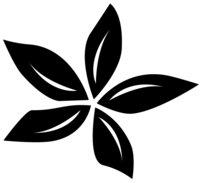 Blossom Coffee logo