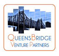 Queensbridge Venture Partners logo
