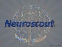 Neuroscout