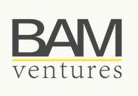 Avatar for BAM Ventures