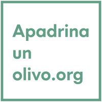 Avatar for Apadrina un olivo