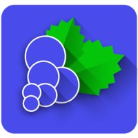 Avatar for BlackCurrant Apps