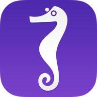 Avatar for Seahorse