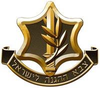 Avatar for IDF