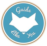 Avatar for Guide Like You