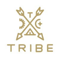 Avatar for Tribe Interactive