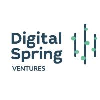 Avatar for Digital Spring Ventures