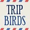 Tripbirds -  social travel travel