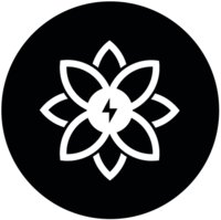 Avatar for Nargiz Electric
