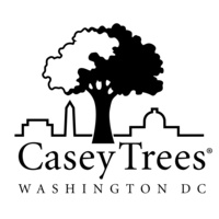Avatar for Casey Trees