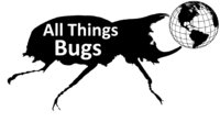 All Things Bugs