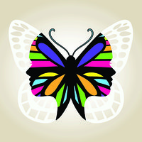 Avatar for Butterfly Hub