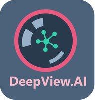 DeepView.AI logo