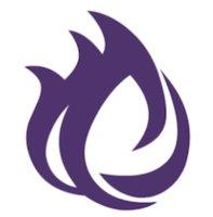 Netherfire logo