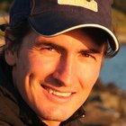 Joe van Niekerk