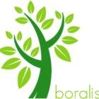 Boralis BV